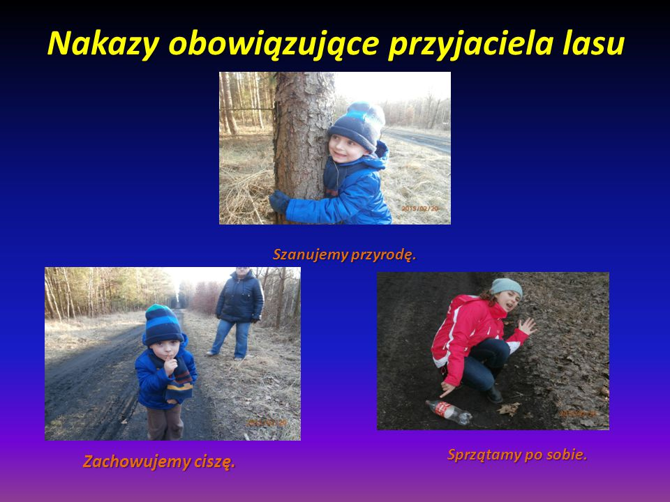 Nakazy obowiązujące przyjaciela lasu