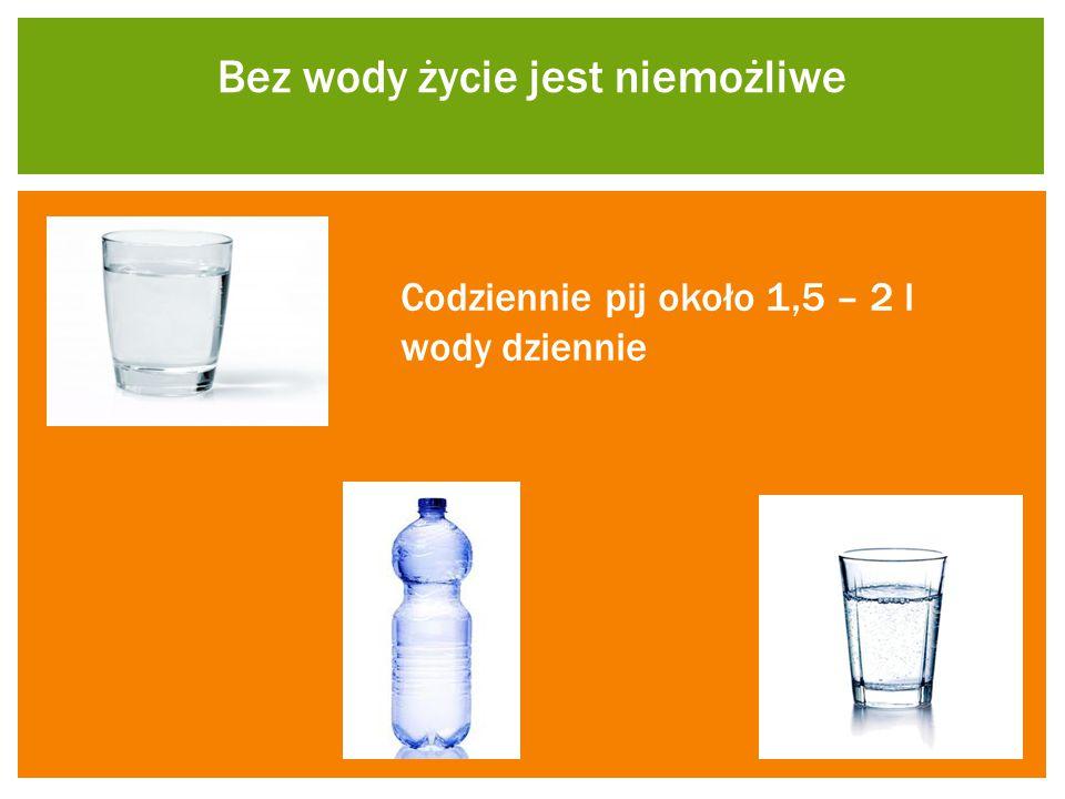Bez wody życie jest niemożliwe