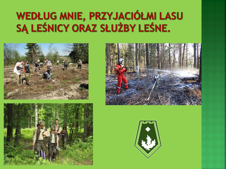 Według mnie, przyjaciółmi lasu są leśnicy oraz Służby Leśne.