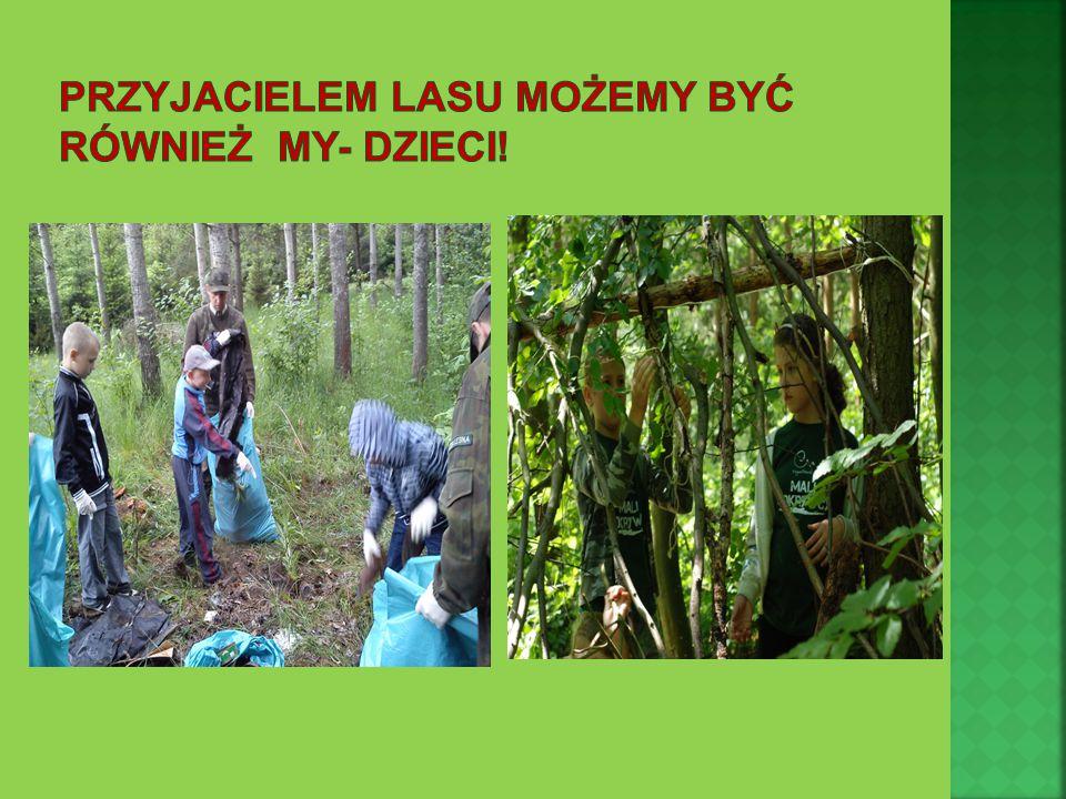 przyjacielem lasu możemy być Również my- dzieci!