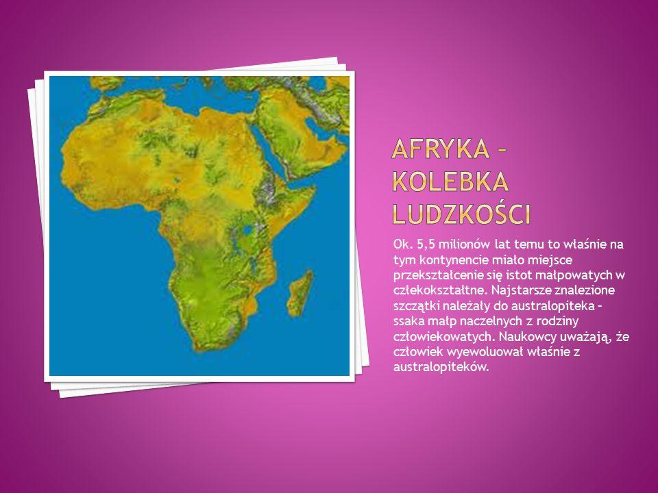 Afryka – kolebka ludzkości