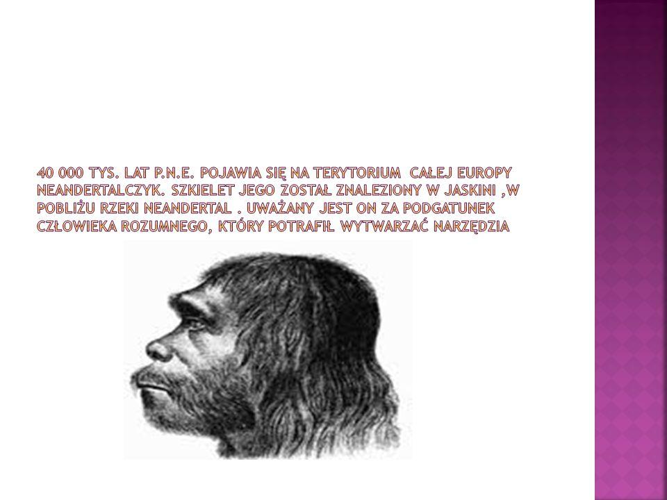 40 000 tys. Lat p.n.e. pojawia się na terytorium całej europy neandertalczyk.