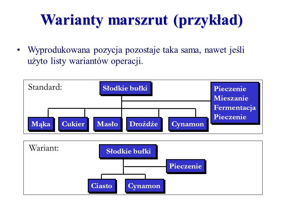 Warianty marszrut (przykład)