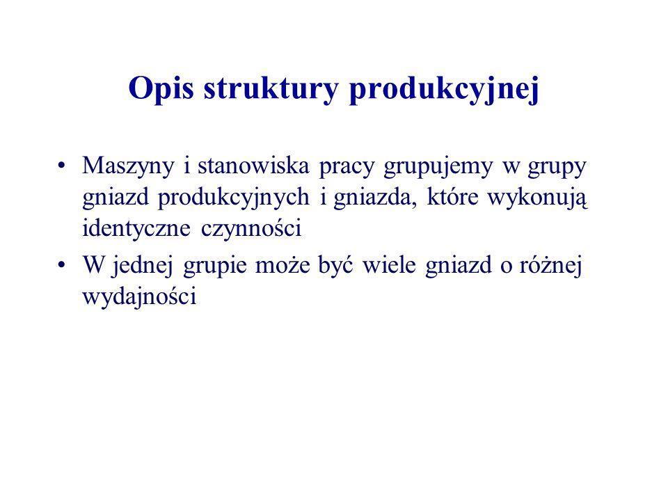 Opis struktury produkcyjnej