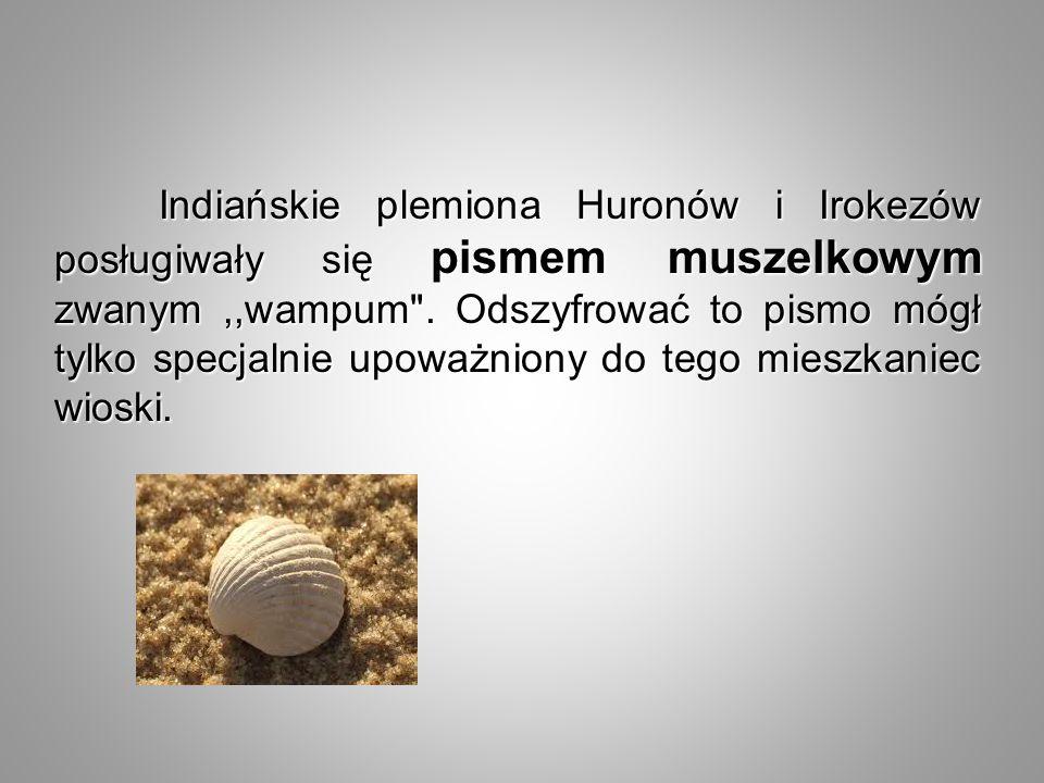 Indiańskie plemiona Huronów i Irokezów posługiwały się pismem muszelkowym zwanym ,,wampum .