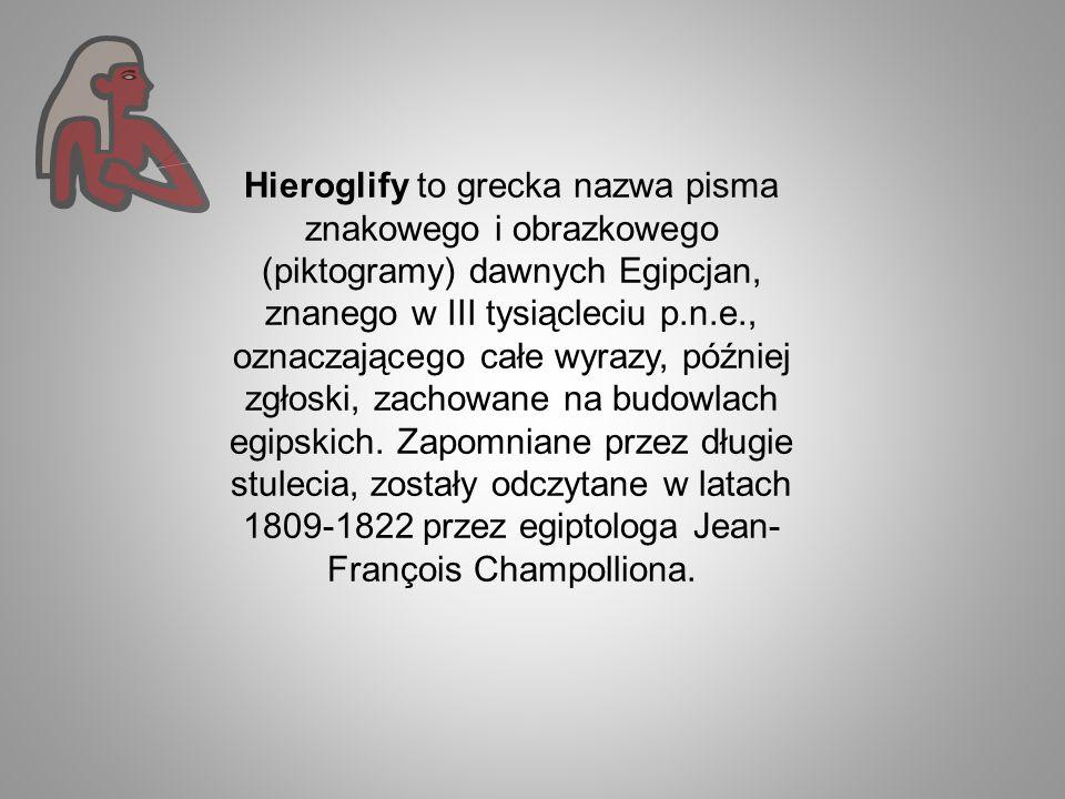 Hieroglify to grecka nazwa pisma znakowego i obrazkowego (piktogramy) dawnych Egipcjan, znanego w III tysiącleciu p.n.e., oznaczającego całe wyrazy, później zgłoski, zachowane na budowlach egipskich.