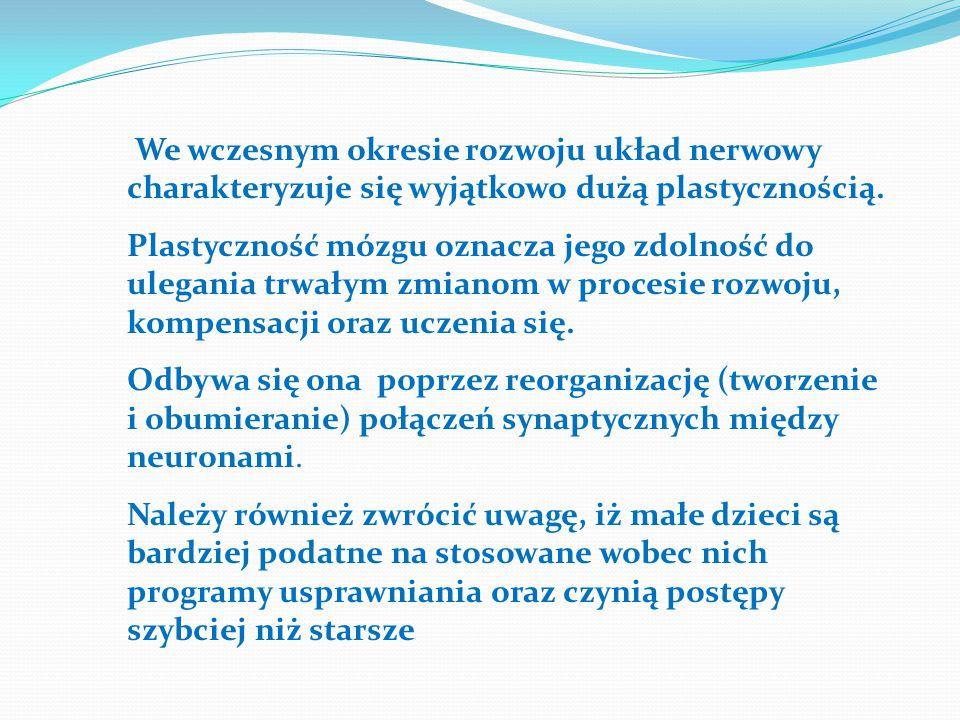 We wczesnym okresie rozwoju układ nerwowy charakteryzuje się wyjątkowo dużą plastycznością.