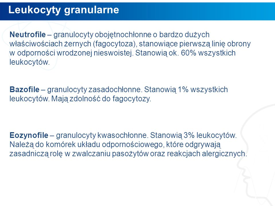 Leukocyty granularne