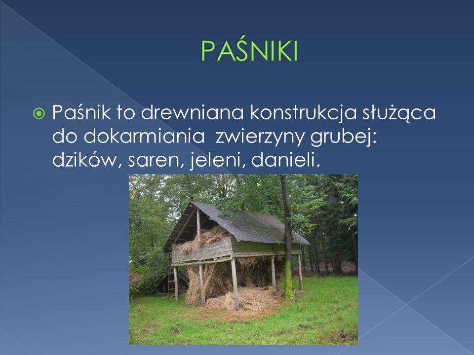 PAŚNIKI Paśnik to drewniana konstrukcja służąca do dokarmiania zwierzyny grubej: dzików, saren, jeleni, danieli.