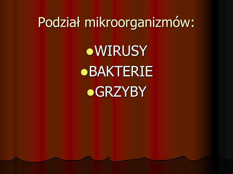 Podział mikroorganizmów: