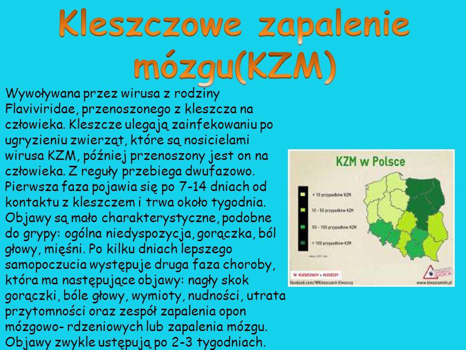 Kleszczowe zapalenie mózgu(KZM)