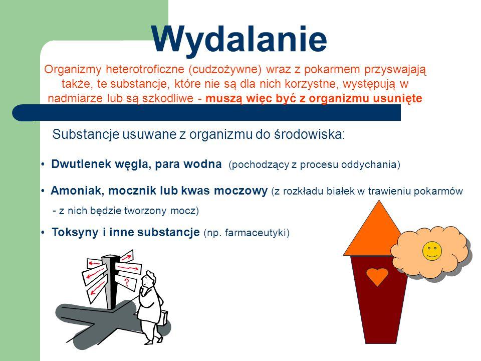 Wydalanie Substancje usuwane z organizmu do środowiska: