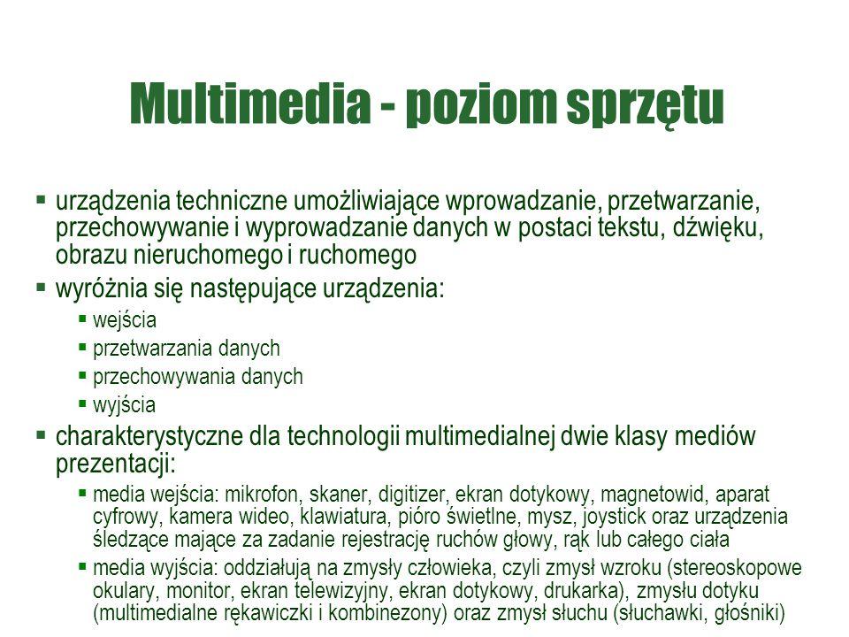 Multimedia - poziom sprzętu