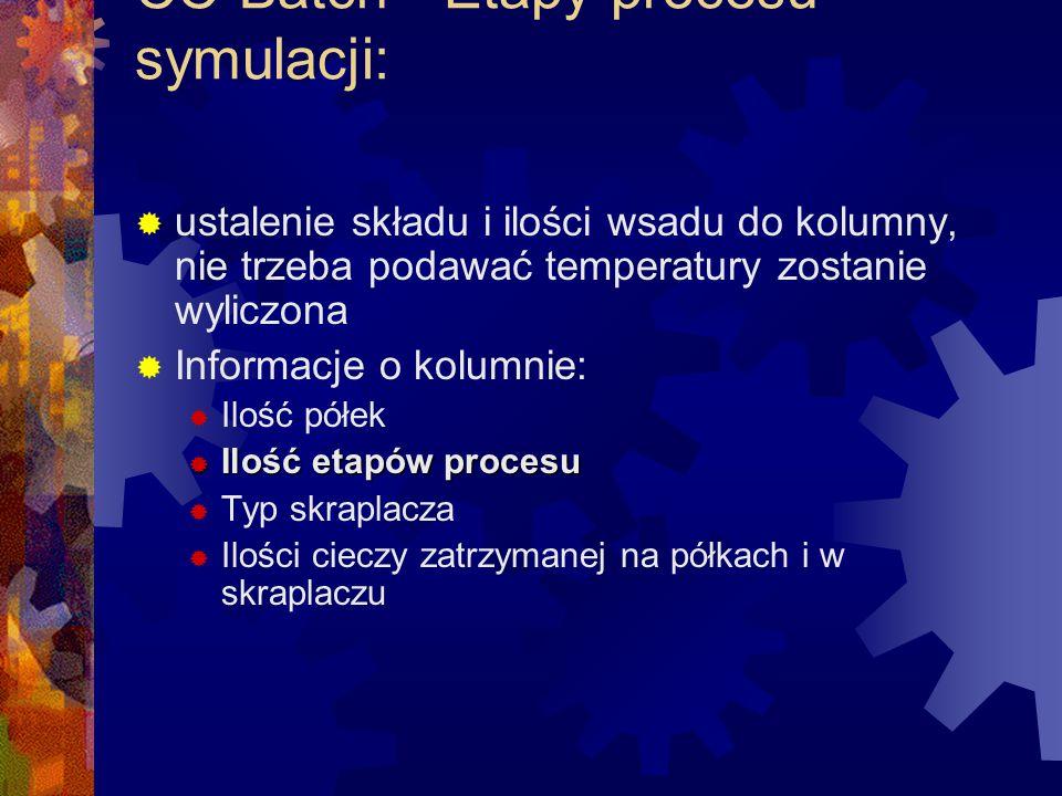 CC-Batch - Etapy procesu symulacji:
