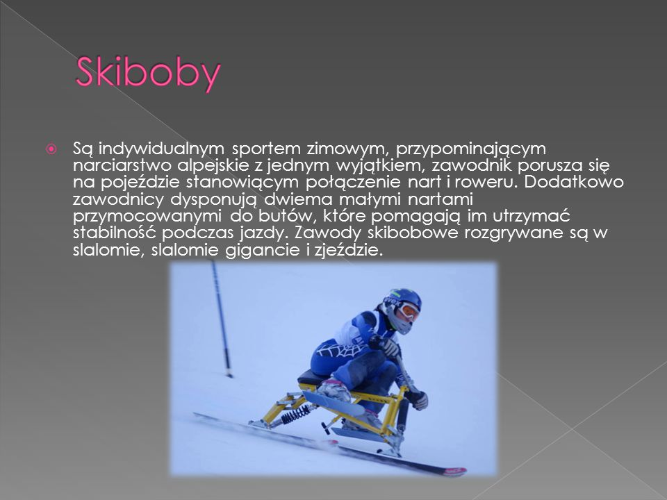 Skiboby