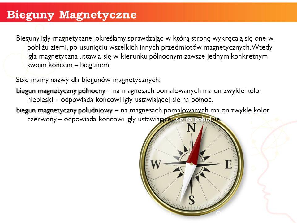 Bieguny Magnetyczne informatyka +