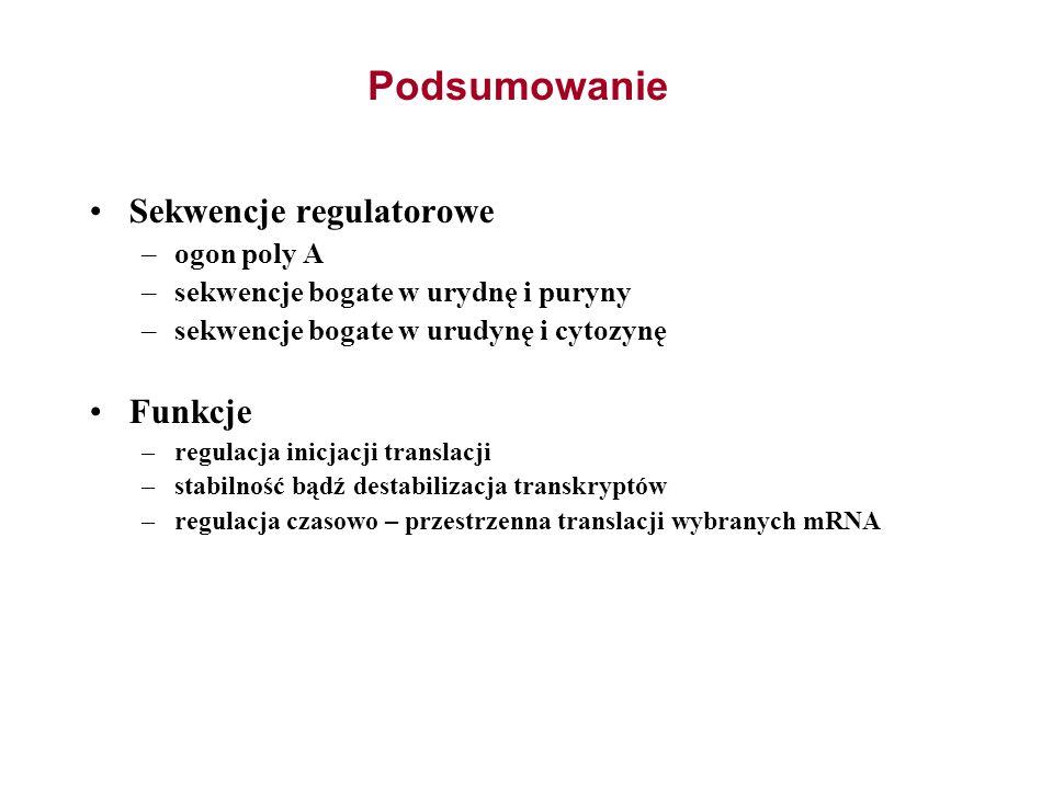 Podsumowanie Sekwencje regulatorowe Funkcje ogon poly A