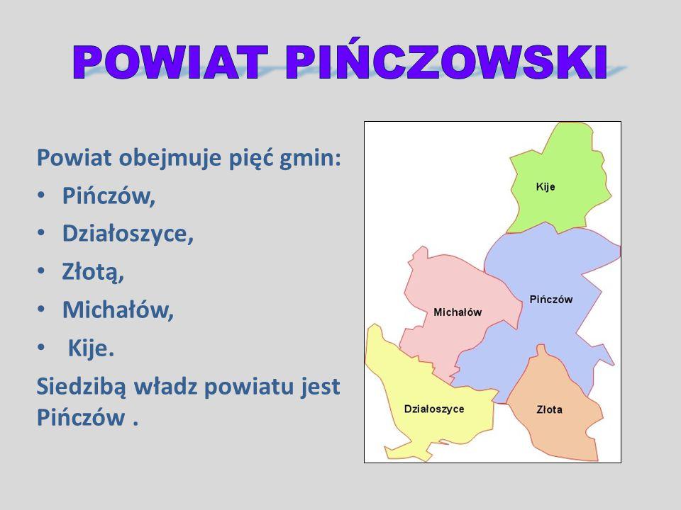 POWIAT PIŃCZOWSKI Powiat obejmuje pięć gmin: Pińczów, Działoszyce,