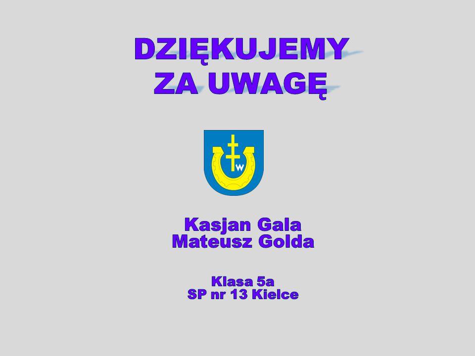 Kasjan Gala Mateusz Golda Klasa 5a SP nr 13 Kielce