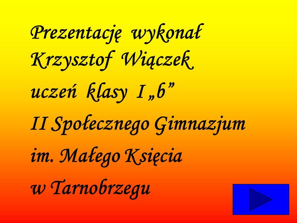 II Społecznego Gimnazjum im. Małego Księcia w Tarnobrzegu