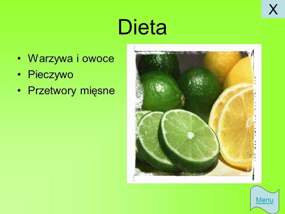 X Dieta Warzywa i owoce Pieczywo Przetwory mięsne Menu