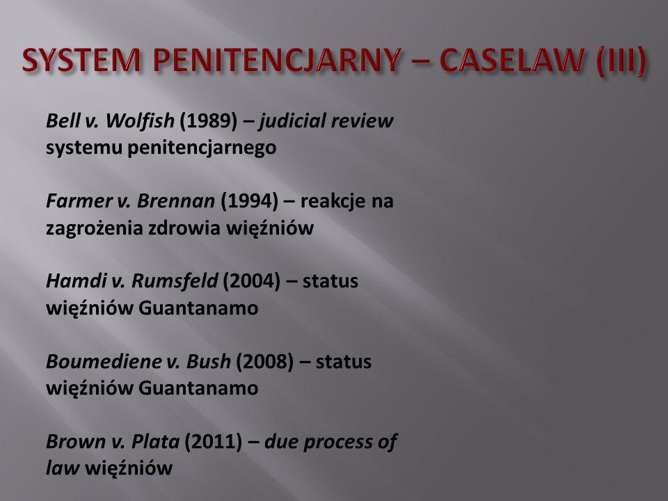 SYSTEM PENITENCJARNY – CASELAW (III)