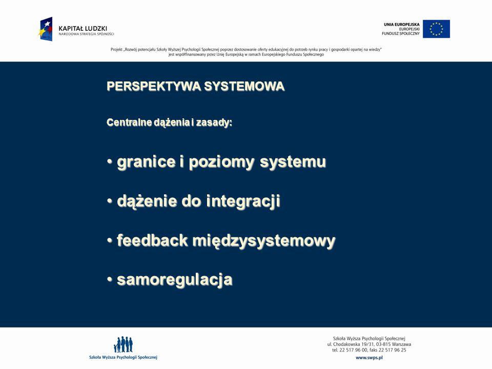 granice i poziomy systemu dążenie do integracji