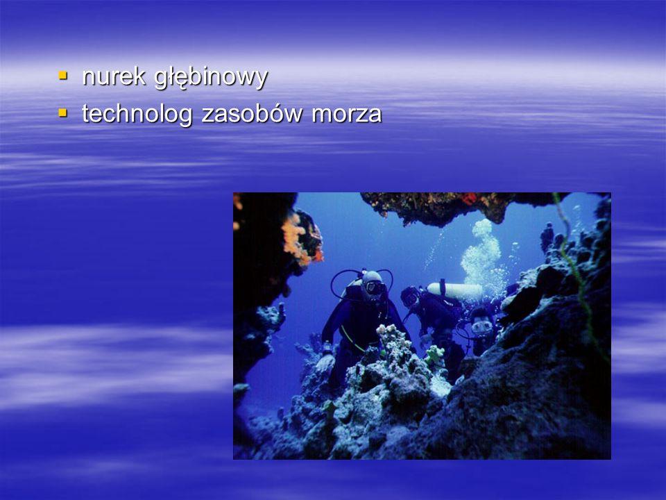 nurek głębinowy technolog zasobów morza
