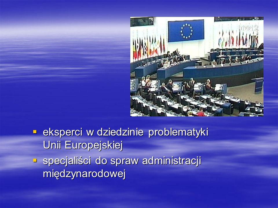 eksperci w dziedzinie problematyki Unii Europejskiej