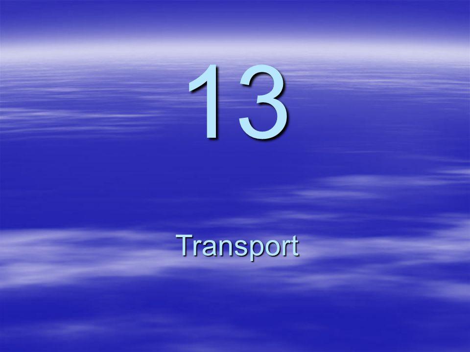 13 Transport
