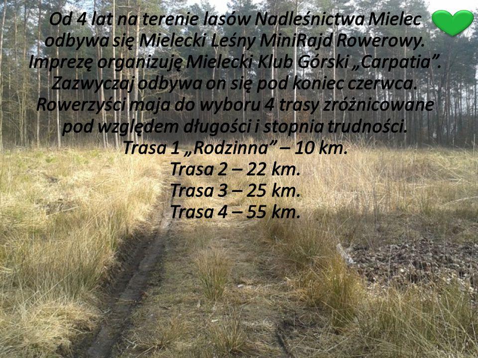 Od 4 lat na terenie lasów Nadleśnictwa Mielec odbywa się Mielecki Leśny MiniRajd Rowerowy.