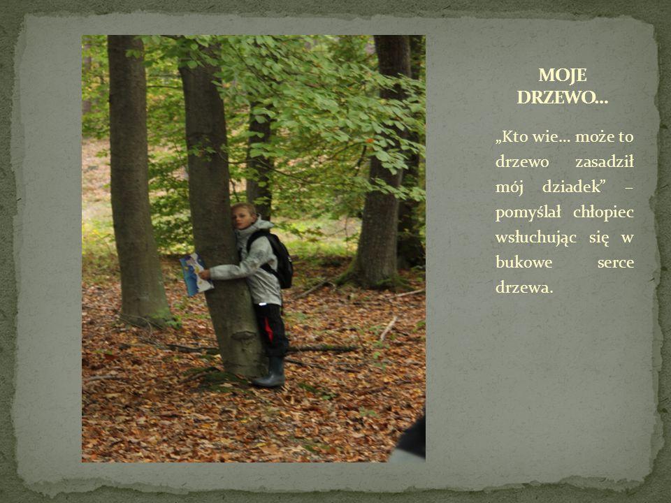"""MOJE DRZEWO… """"Kto wie… może to drzewo zasadził mój dziadek – pomyślał chłopiec wsłuchując się w bukowe serce drzewa."""