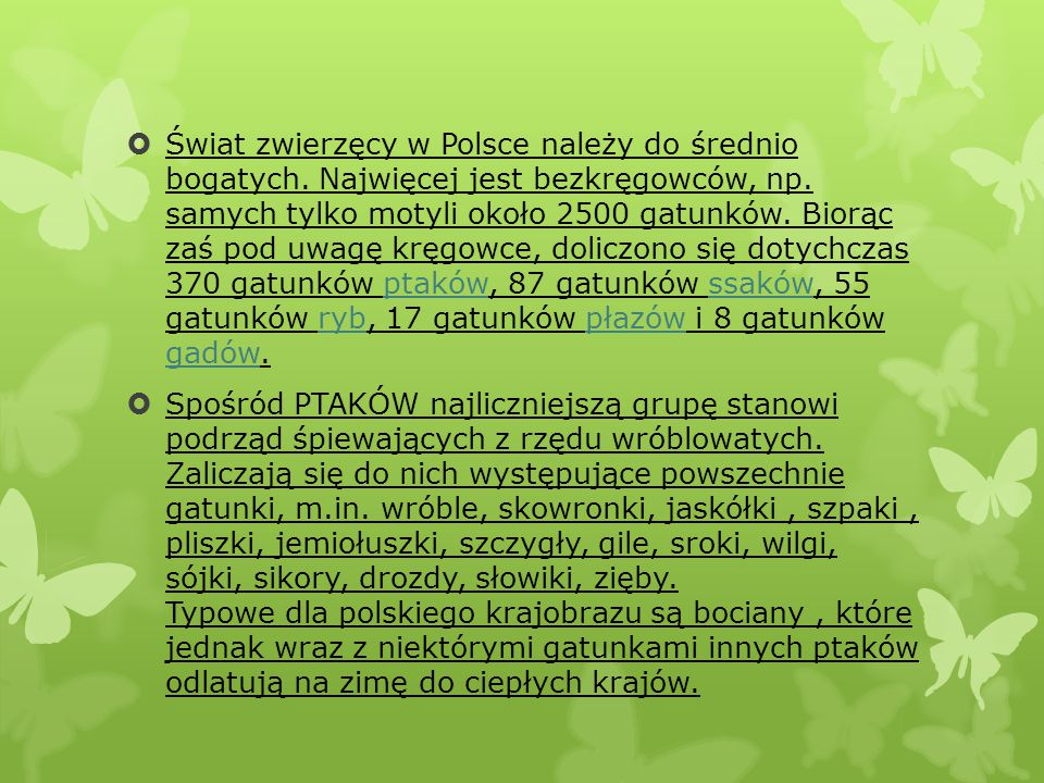 Świat zwierzęcy w Polsce należy do średnio bogatych