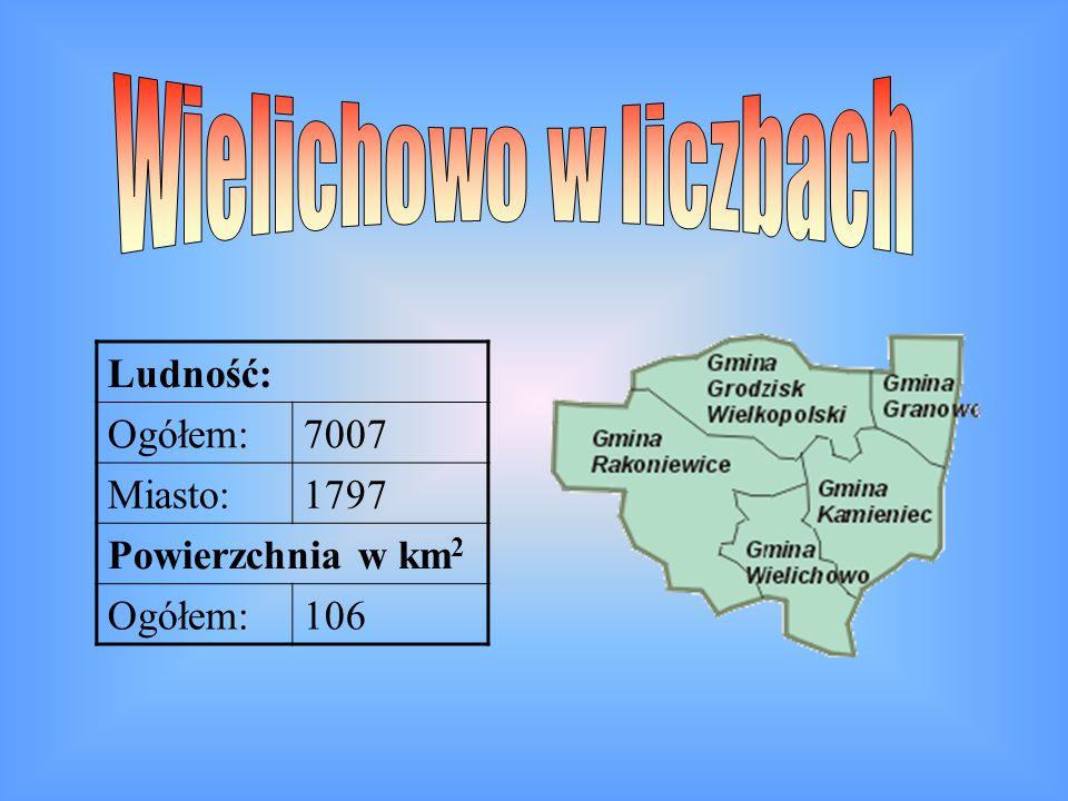 Wielichowo w liczbach Ludność: Ogółem: 7007 Miasto: 1797