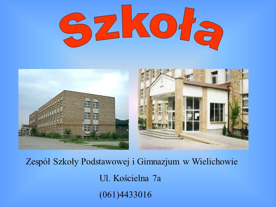 Szkoła Zespół Szkoły Podstawowej i Gimnazjum w Wielichowie