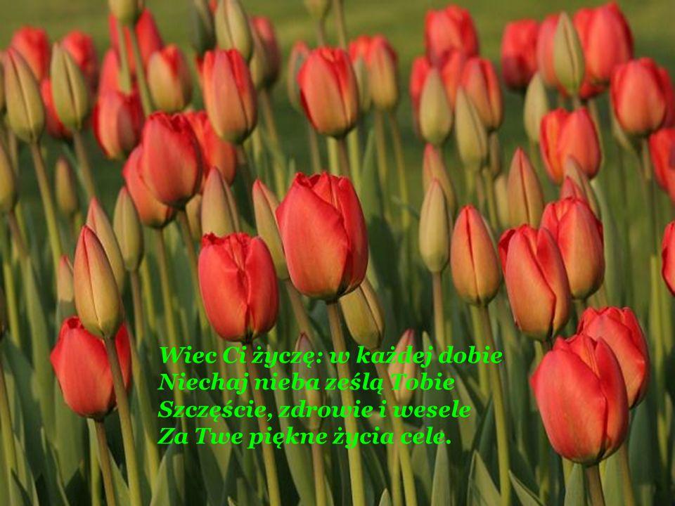Wiec Ci życzę: w każdej dobie Niechaj nieba ześlą Tobie Szczęście, zdrowie i wesele Za Twe piękne życia cele.