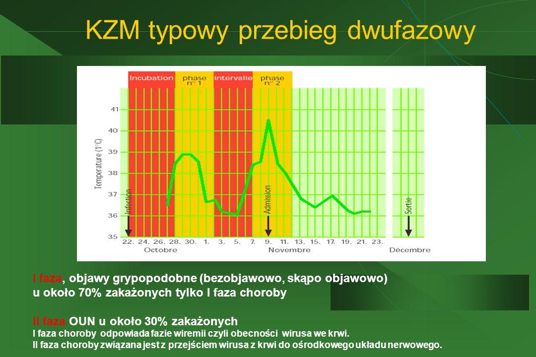 KZM typowy przebieg dwufazowy