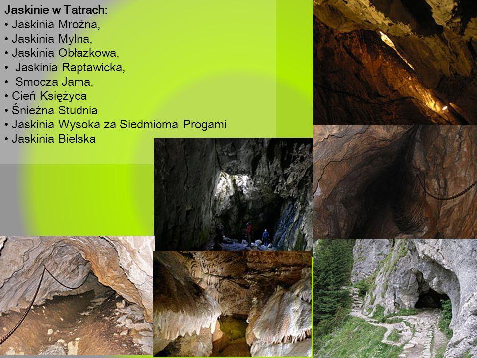 Jaskinie w Tatrach: • Jaskinia Mroźna, • Jaskinia Mylna, • Jaskinia Obłazkowa, • Jaskinia Raptawicka,