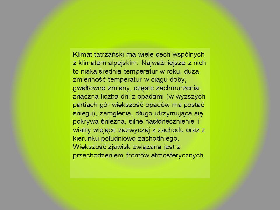 Klimat tatrzański ma wiele cech wspólnych z klimatem alpejskim