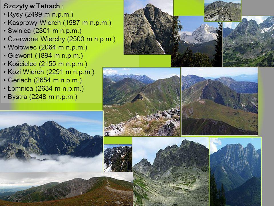 Szczyty w Tatrach : • Rysy (2499 m n.p.m.) • Kasprowy Wierch (1987 m n.p.m.) • Świnica (2301 m n.p.m.)
