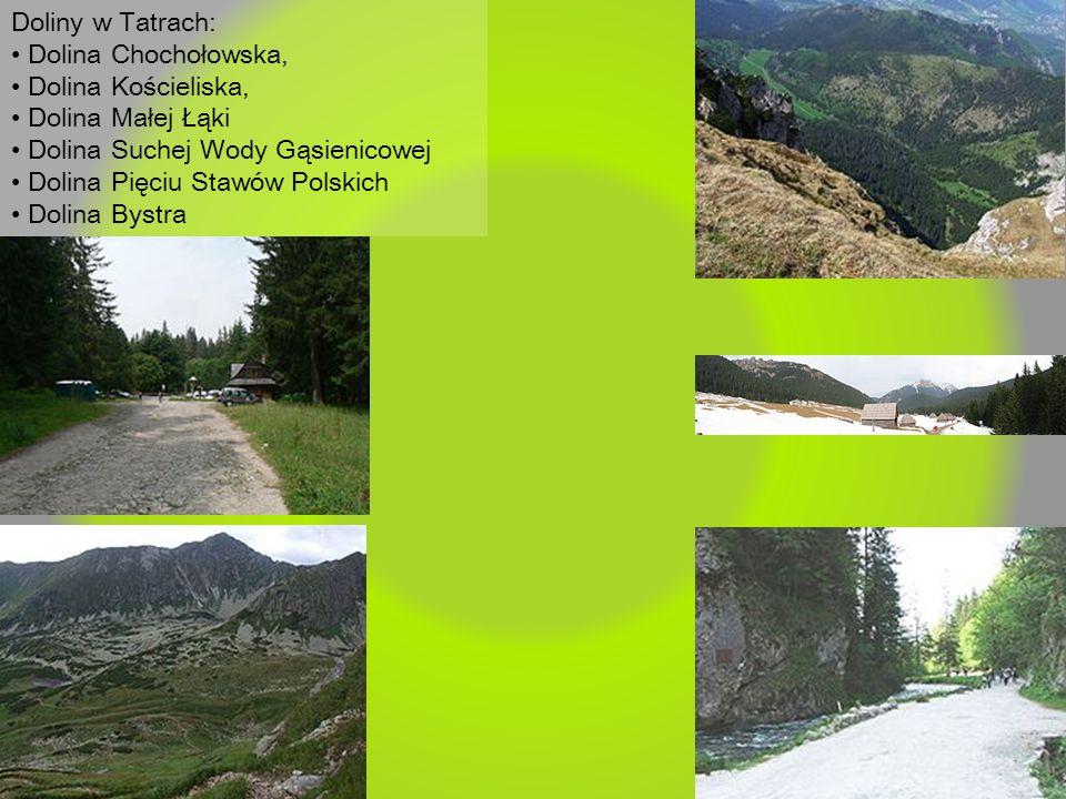 Doliny w Tatrach: • Dolina Chochołowska, • Dolina Kościeliska, • Dolina Małej Łąki. • Dolina Suchej Wody Gąsienicowej.