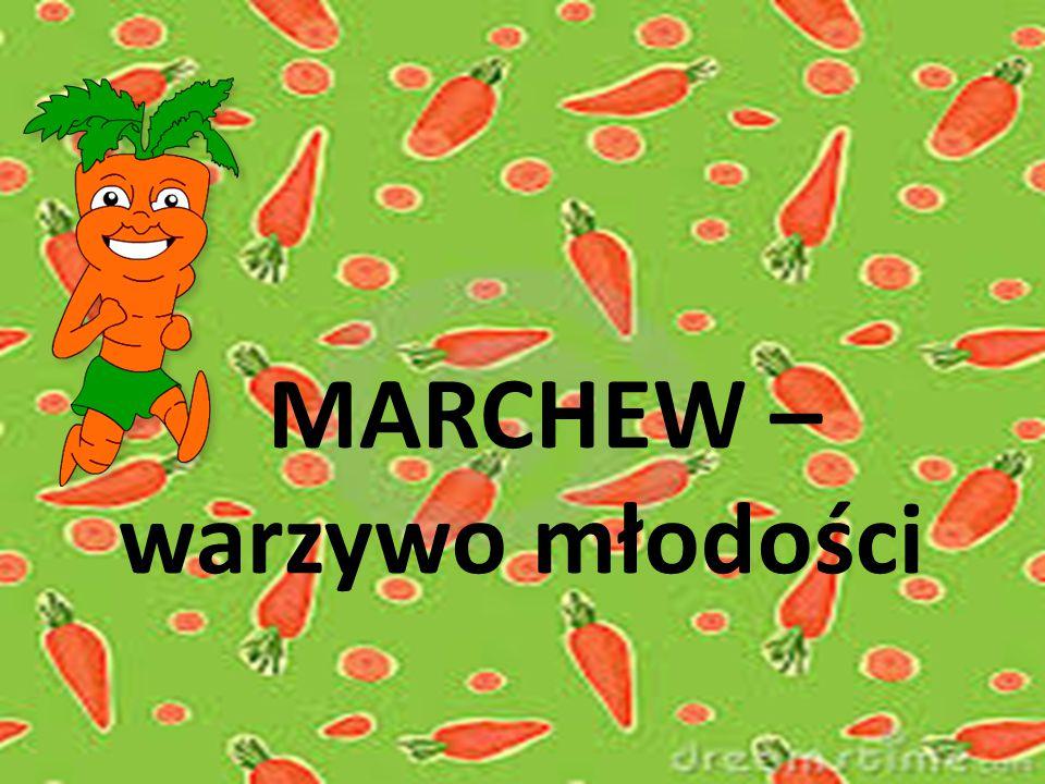 MARCHEW – warzywo młodości