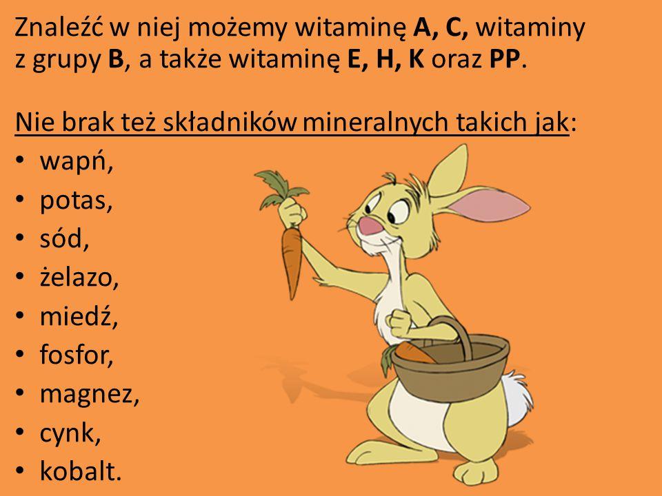 Znaleźć w niej możemy witaminę A, C, witaminy z grupy B, a także witaminę E, H, K oraz PP. Nie brak też składników mineralnych takich jak: