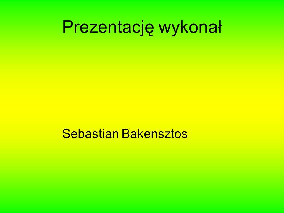 Prezentację wykonał Sebastian Bakensztos