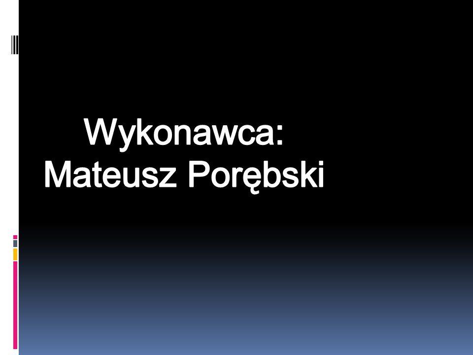 Wykonawca: Mateusz Porębski