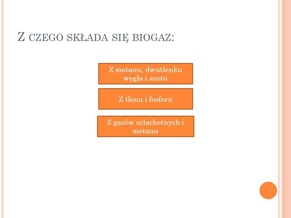 Z czego składa się biogaz: