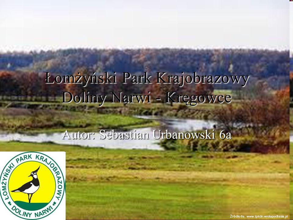 Łomżyński Park Krajobrazowy Doliny Narwi - Kręgowce