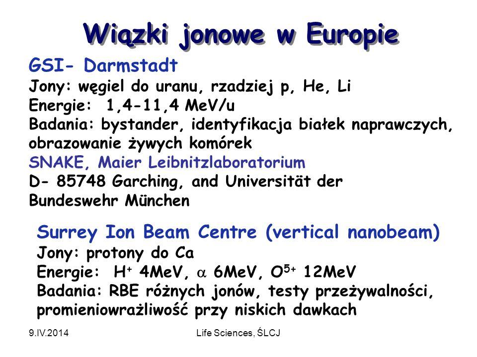 Wiązki jonowe w Europie