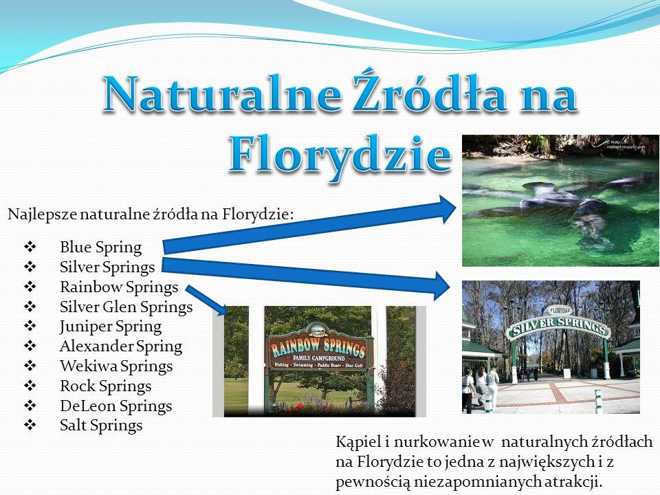 Naturalne Źródła na Florydzie