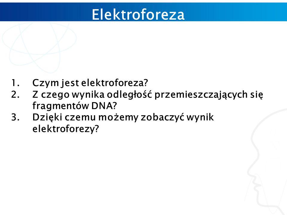 Elektroforeza Czym jest elektroforeza